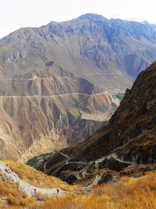 Schon ziemlich hoch - und trotzdem noch weit... Colca-Canon, Peru (Foto Jörg Schwarz)