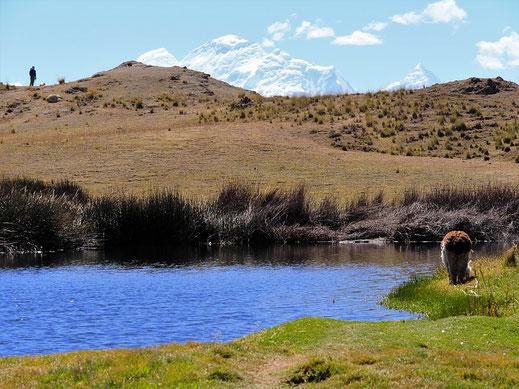 Die Laguna Wilkacocha bietet idyllische Ruhe und fantastischen Weitblick, Huaraz, Peru (Foto Jörg Schwarz)