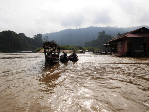 Der Tembeling Fluss markiert die Grenze zum Nationalpark und muss überwunden werden... Malaysia (Foto Jörg Schwarz)