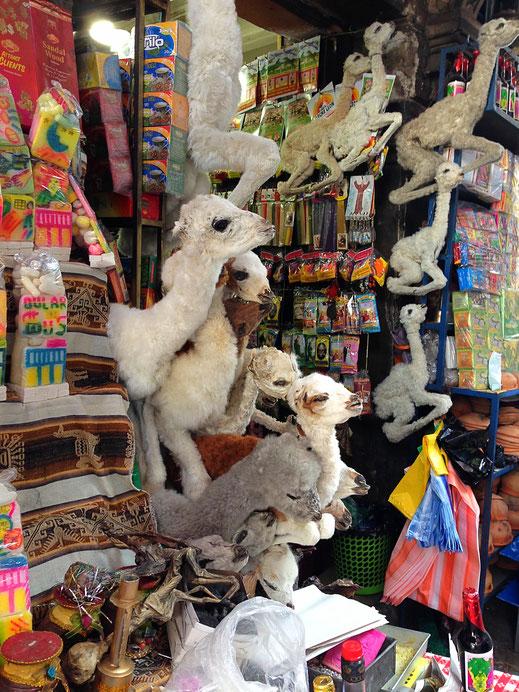 Am sog. Hexenmarkt... La Paz, Bolivien (Foto Jörg Schwarz)
