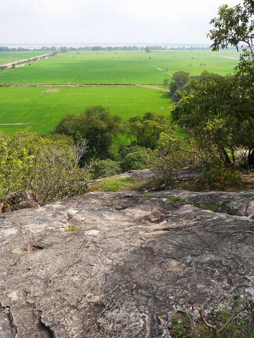 Fantastischer Ausblick auf junge Reisfelder vom Tempelberg, Angkor Borei, Kambodscha (Foto Jörg Schwarz)