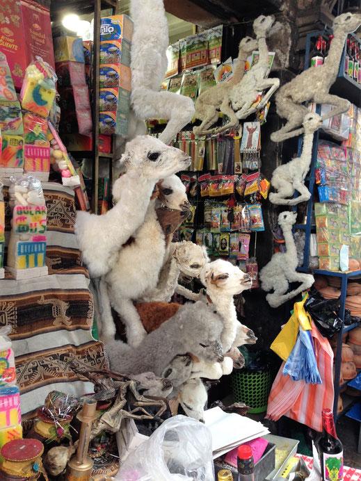 Am sog. Hexenmarkt erstaunen die Auslagen... La Paz, Bolivien (Foto Jörg Schwarz)
