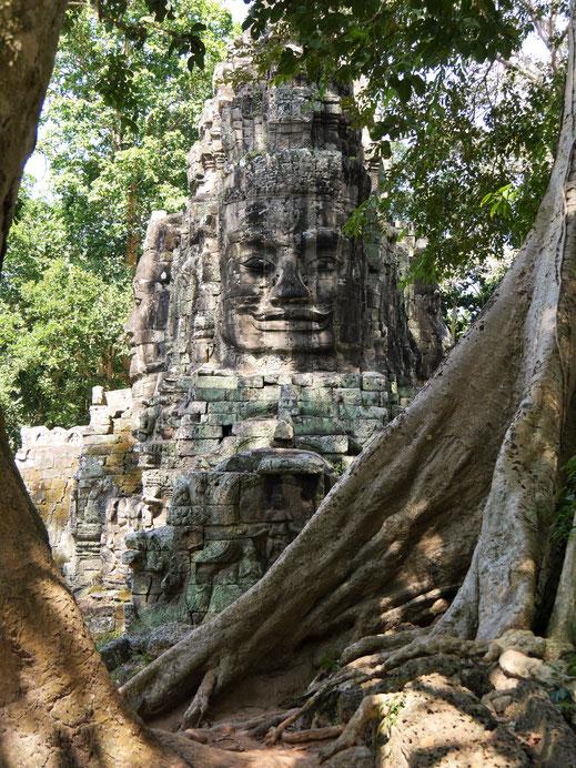 Immer wieder begegnet man den viergesichtigen Buddhaköpfen, Angkor Thom, Kambodscha (Foto Jörg Schwarz)