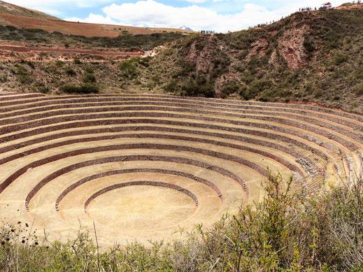 Experimentierfeld der Inka? Moray, Peru (Foto Jörg Schwarz)
