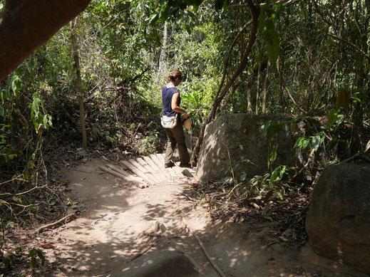 Es geht hier ganz schön rauf und runter... Tayronapark, Kolumbien (Foto Jörg Schwarz)
