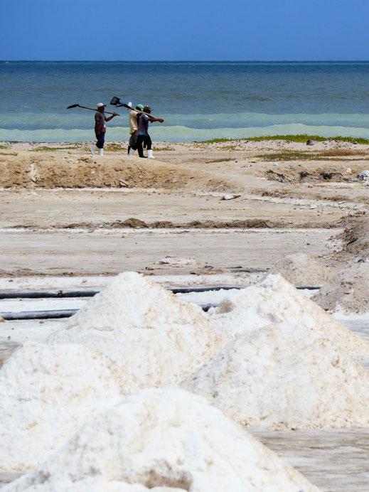 In den Überschwemmungszonen der Wüste herrschen perfekte Bedingungen für Meersalzproduktion, Halbinsel Guajira, Kolumbien (Foto Jörg Schwarz)