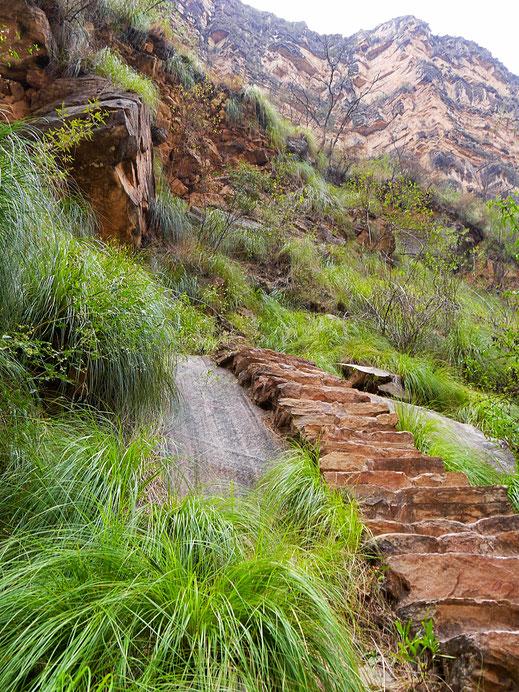 Nach unten hin ist es grün und glitschig, Toro Toro, Bolivien (Foto Jörg Schwarz)