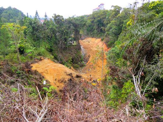 Schneise der Verwüstung: Kahlschlag am Fuß des Gunung Jasar, Tanah Rata, Malaysia (Foto Jörg Schwarz)