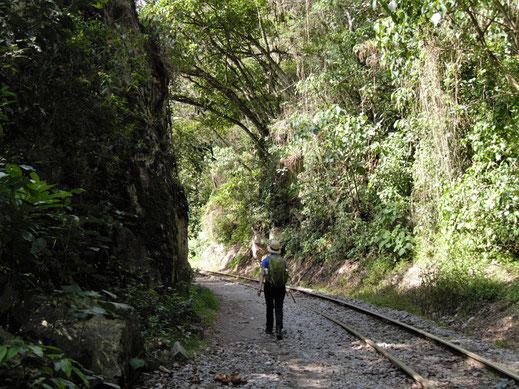 Mitten im tropischen Urwald... Aguas Caliente, Peru (Foto Jörg Schwarz)