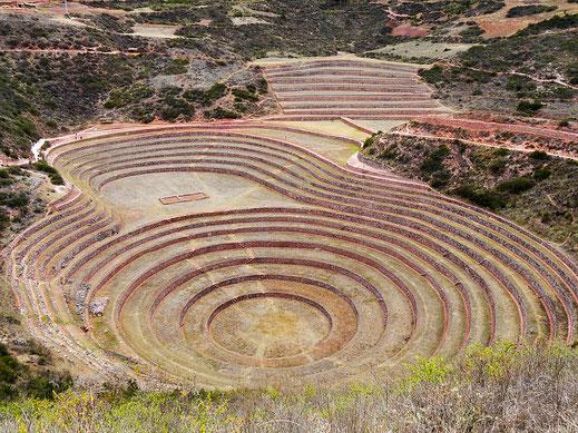 Die rund geformten Terrassenfelder von Moray, Maras, Peru (Foto Jörg Schwarz)