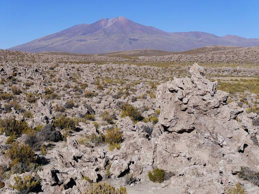 Ein breitflächiges imposantes Lavafeld - was für Energien diese Brocken hier hergeschleudert haben, ist unvorstellbar, Reservat de Fauna Andina, Bolivien (Foto Jörg Schwarz)