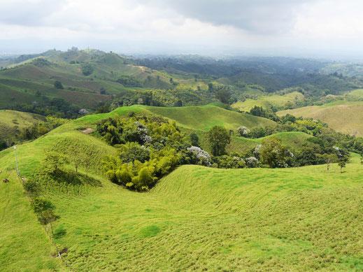 Aber auch die fabelhafte Landschaft rundherum ist sehenswert! Bei Filandia, Kolumbien (Foto Jörg Schwarz)