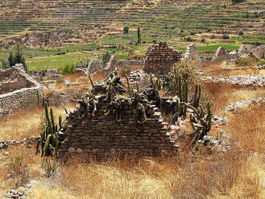 Kultur? Natur? Skulptur! Uyo Uyo bei Chivay, Peru (Foto Jörg Schwarz)
