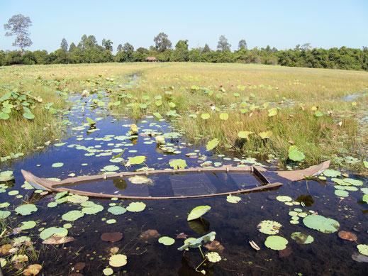 """Mit diesem """"abgesoffenen"""" Boot werden normalerweise die Lotusblumen geerntet... Siem Reap, Kambodscha (Foto Jörg Schwarz)"""