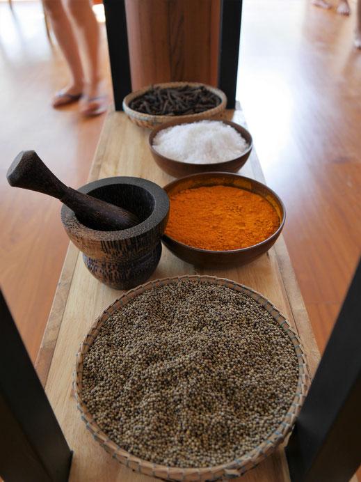 Einige der finalen Produkte der Region: Langpfeffer, weißer Pfeffer, Kurkuma und Meersalz, Kampot, Kambodscha (Foto Jörg Schwarz)