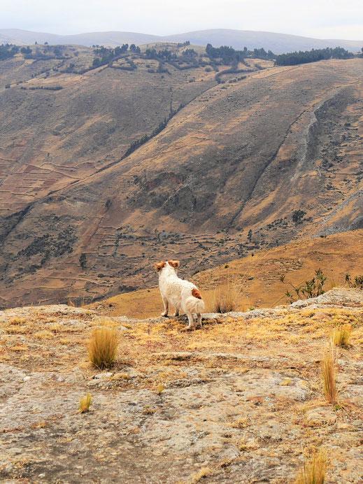 """""""Er wird doch nicht...!?"""" oder """"Kreidefelsen bei Uchkus..."""", Uchkus Incañan, Peru (Foto Jörg Schwarz)"""