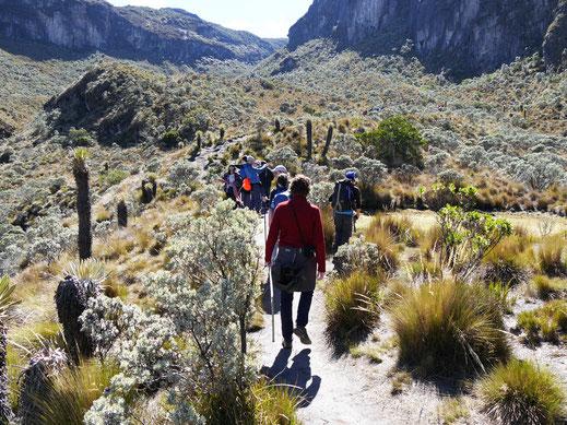 Zunächst läuft eine ordentliche Menschenmenge gleichzeitig los... Los Nevados, Kolumbien (Foto Jörg Schwarz)