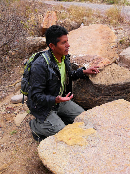 Eduardo und der Negativfußabdruck eines Dinosauriers, Toro Toro, Bolivien (Foto Jörg Schwarz)