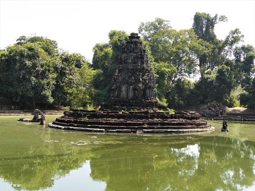 Viel zu sehen gibt es hier nicht, dafür dominiert die Natur... Neak Pean, Kambodscha  (Foto Jörg Schwarz)
