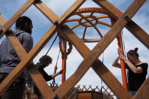Teamwork: Der Aufbau einer Jurte funktioniert nur im Team.