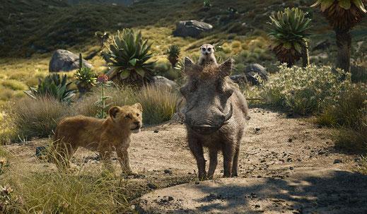 Der König der Löwen 2019 Remake Film Review FANwerk Deutsch Kritik Rezension Simba Timon Pumba