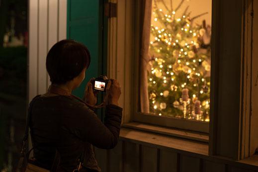 窓から見えるツリーを撮影