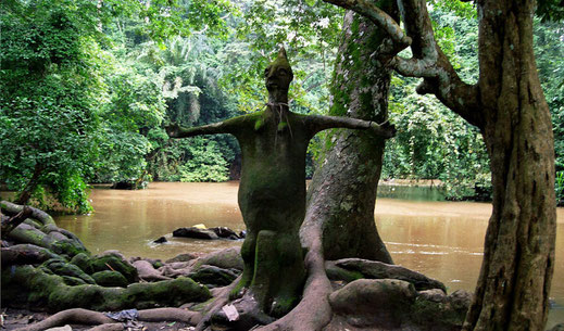 Osun-Osogbo Sacred Grove, Nigeria • Picture by Grace Stephen