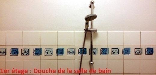 Salle de bains équipée d'une douche