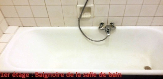 Salle de bains avec Baignoire équipée d'un pare-douche