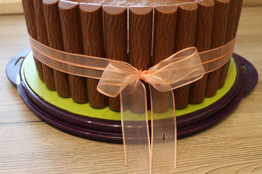 chocolate cake in style of a tray
