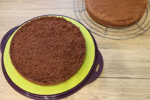 Schokoladen Bisquit Boden
