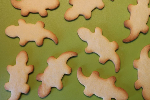 gebackene Salamander Kekse