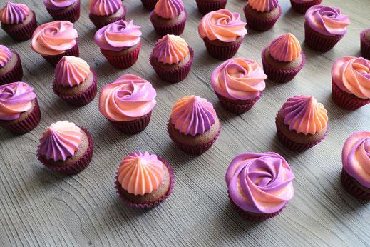 Zweifarbige Cupcakes
