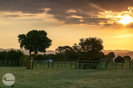 Neuseeland Sonnenuntergang2