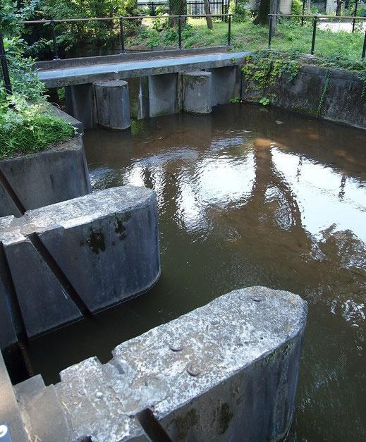 8月22日(2014) 玉川上水・境水衛所跡(武蔵野市):江戸時代には水番所(みずばんじょ)と呼ばれ、江戸市中への水を確保するために、水番人が常駐していた場所(8月21日撮影)