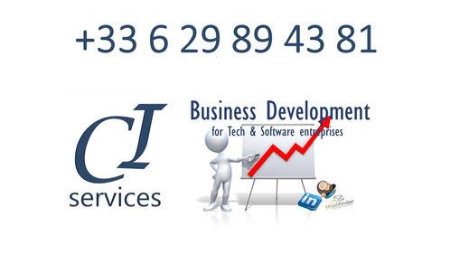 ci-services agence de prospection b-to-b spécialisée hightech