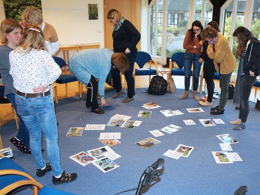 Gruppenarbeit in der Fachkraftweiterbildung zur Tiergestützten Arbeit.