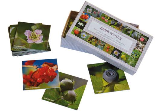 Schachtel mit allen Motiven des Spiels auf dem Deckel; Spielkärtschen mit Brombeerblüte, Beeren des Gemeinen Schneeballs, Haselnuß, Heidelbeere