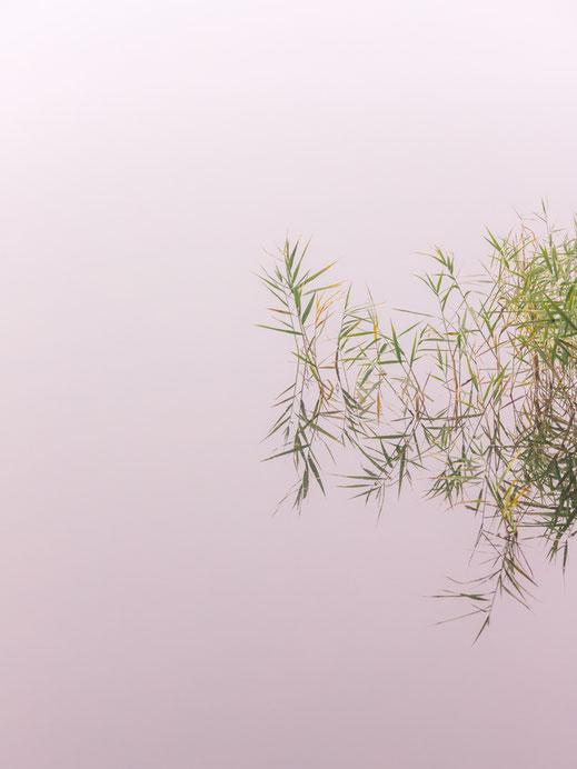 Großer Kronsee, Minimalismus, Fotografie, Spiegelung, See, photography, moderne, Fotokunst, minimalism, minimalist, minimalistisch, Holger Nimtz, Kunst, fine art, Uckermark,