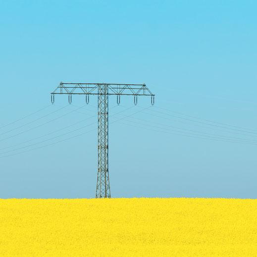 Landschaft, Rapsfeld, gelb, Spring, Frühling, Fotografie, Minimalismus, minimalism, minimalist, minimalistisch, Holger Nimtz, Wandbild, Kunst, fine art, Fotokunst, Photography,