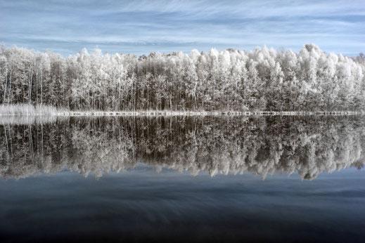 reflection, Spiegelung, Infrarot, Holger Nimtz, Infrared, Fotografie, Bäume, See, Kleiner Kronsee, Türkshof, Uckermark, Photography, Infrarotaufnahme, IR,