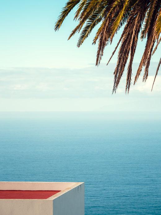 Minimalismus, Fotografie, palm tree, photography, Fotokunst, minimalism, minimalist, minimalistisch, Holger Nimtz, Wandbild, Kunst, fine art, El Hierro, Kanarische Inseln,