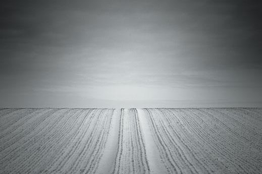 field, snow, winter, agriculture, schwarz-weiß, Fotografie, Minimalismus, minimalism, minimalist, minimalistisch, Holger Nimtz, Wandbild, Kunst, fine art, photography,