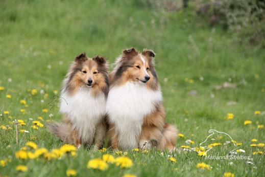 Amelie (links) mit ihrer Mutter Heaven (rechts)