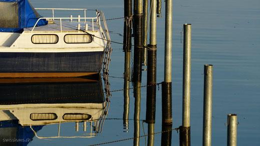 Boot und Pfähle spiegeln sich im Hafen beim Weissen Haus in Altenrhein.