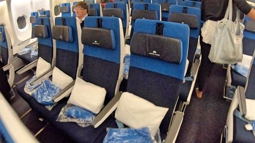 KLM A330 Economy Class