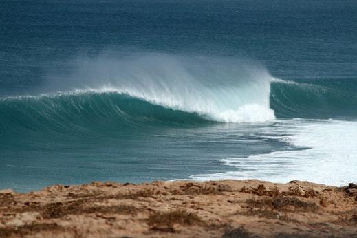 WA waves