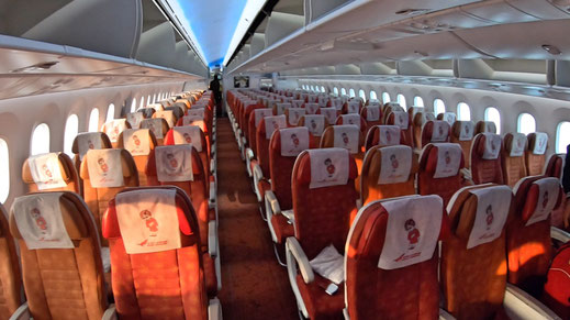 Air India 787 Economy Class