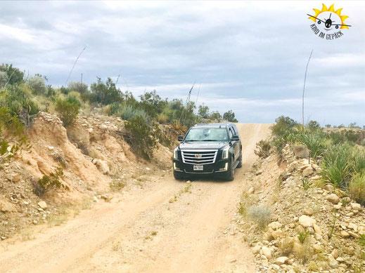 Die Old Ore Road führt durch eine einzigartige Wüsten-Landschaft.