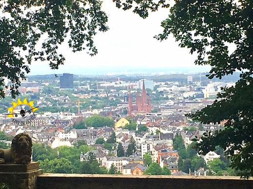 """Wiesbaden von """"oben"""". Der Blick vom Neroberg aus auf die Innenstadt."""